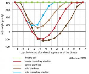 figuur-1-groei-gezonde-kalveren-vs-luchtaandoeningen-vs-diarree